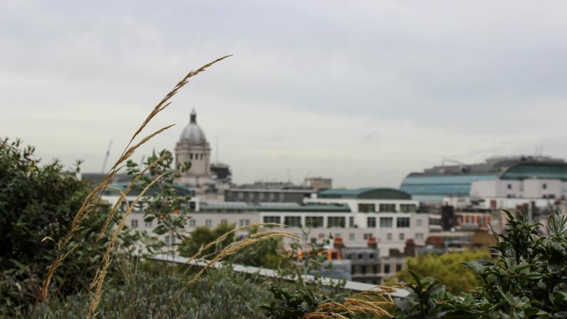 a view of St Pauls in London