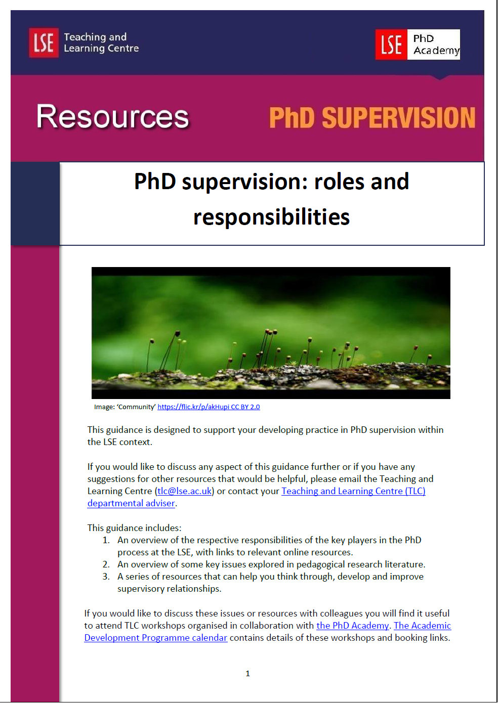 PhD Supervision Cover image