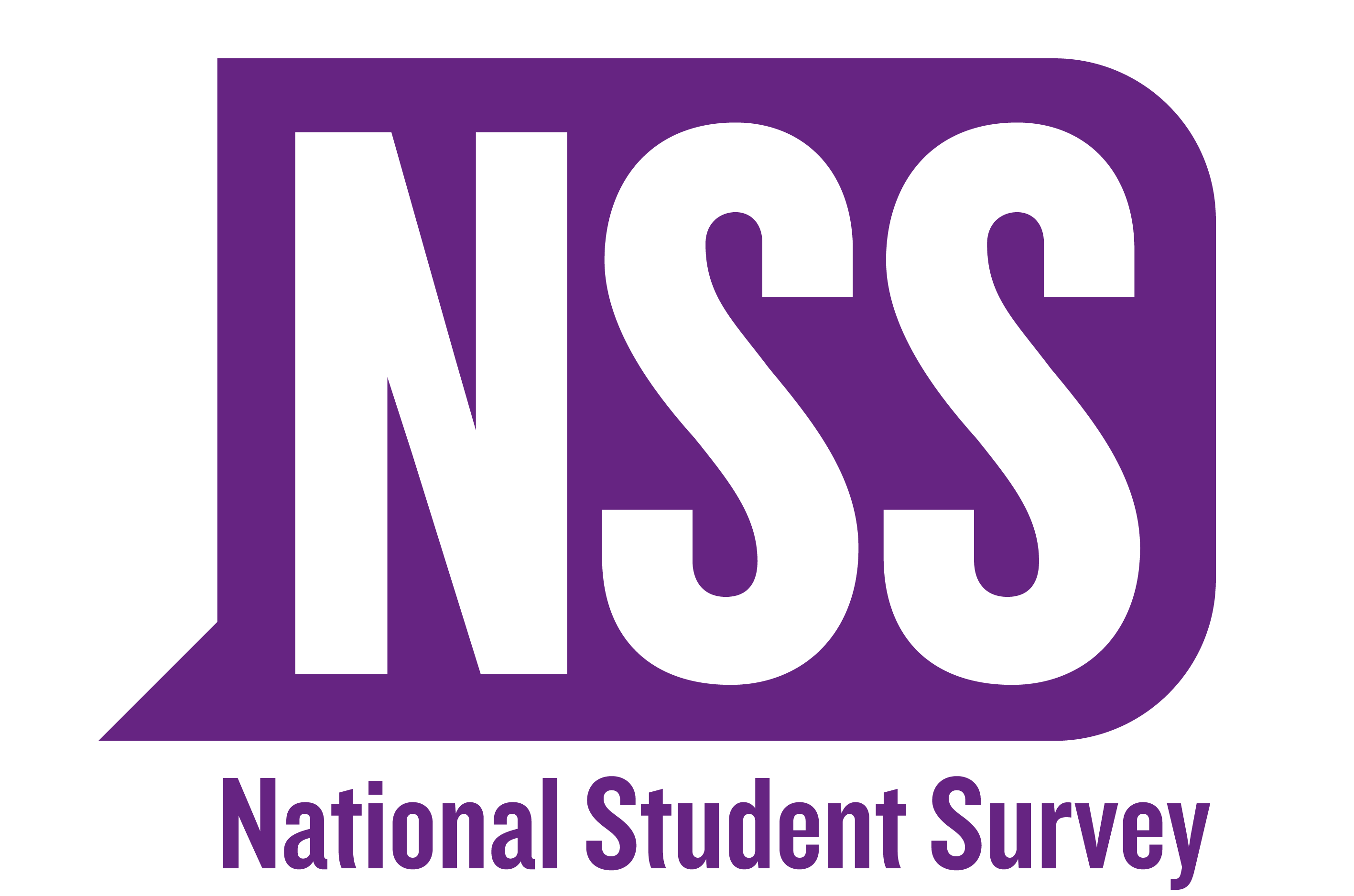 NATIONAL STUDENT SURVEY 2017 LOGO